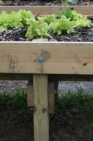 raised bed 4.jpg