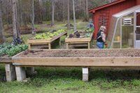 Raised beds 1.jpg