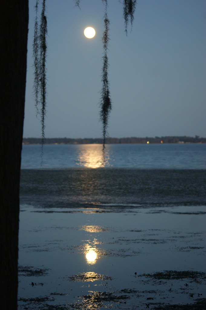 Full moon over St. Johns River 1-9-12