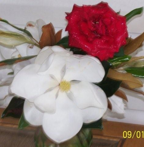 MagnoliaandRose004