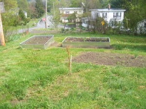 2 new raised beds and seeded lawn.